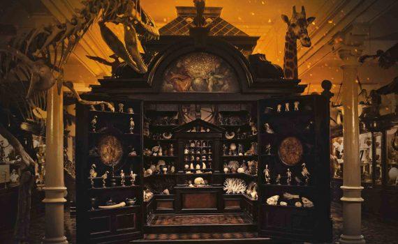"""tráiler Museo de las Maravillas"""""""